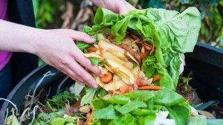 Spreco alimentare: cos'è e come riuscire a combatterlo